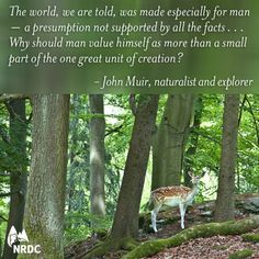 Image result for john muir quotes about nature