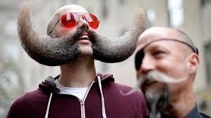 Resultado de imagen de bigotes curiosos