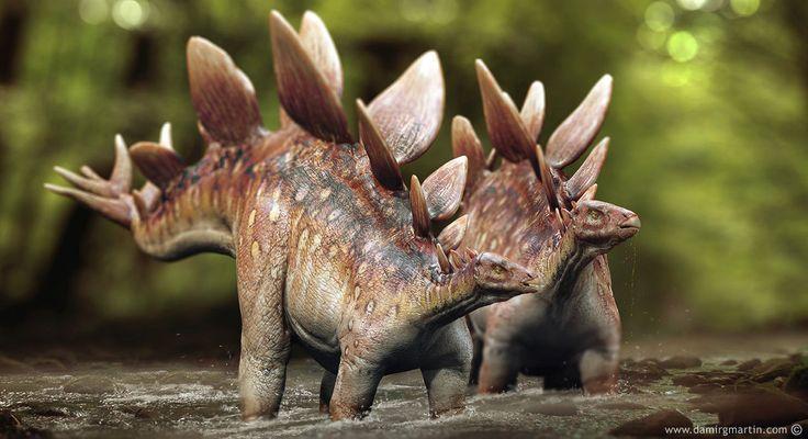 Stegosaurus couple by damir-g-martin.deviantart.com on @DeviantArt