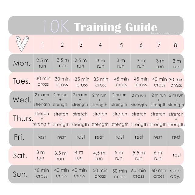 Run a 10K in 8 weeks with this training plan created for beginners. http://www.topknotsandjots.com/2015/09/10k-training-guide.html