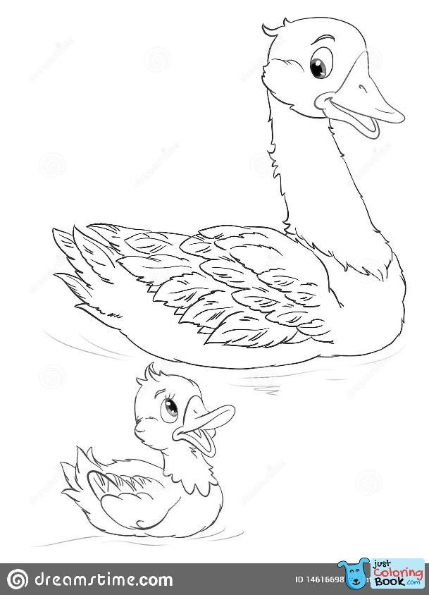 Goose And Gosling Coloring Page Stock Illustration Illustration Of Throughout Mother Goose And Her Goslings Coloring Pages Pr Disegni Bambini Disegni Bambini