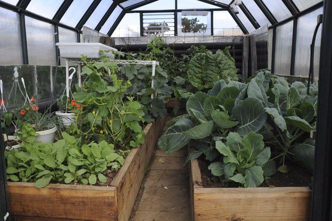 Garden Circkles A Self Sufficient Greenhouse Beneficial