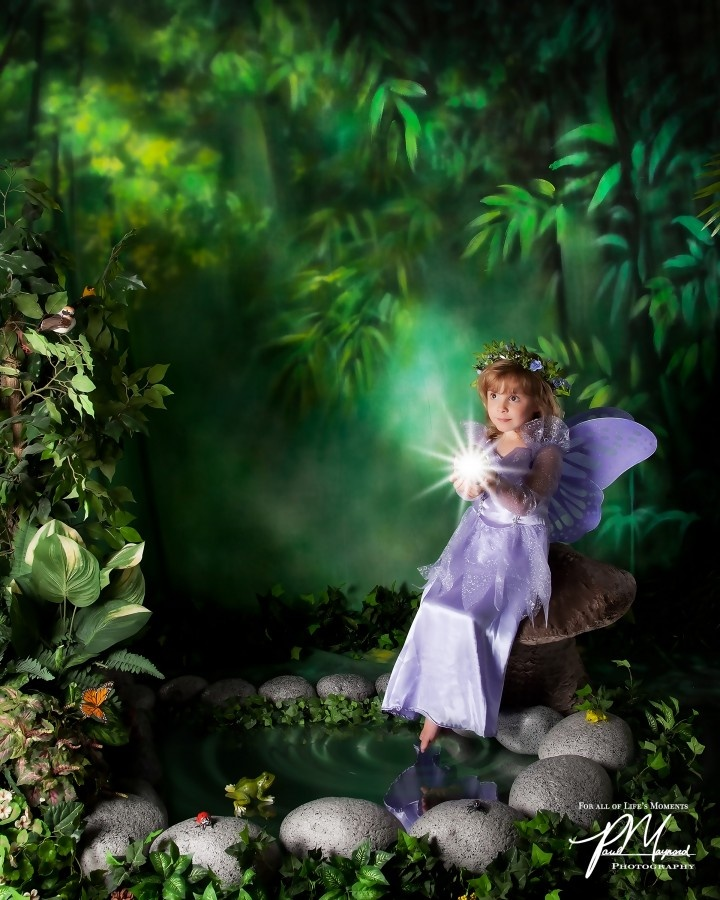 1103 Best Images About Magical Kingdom Of Fairies On