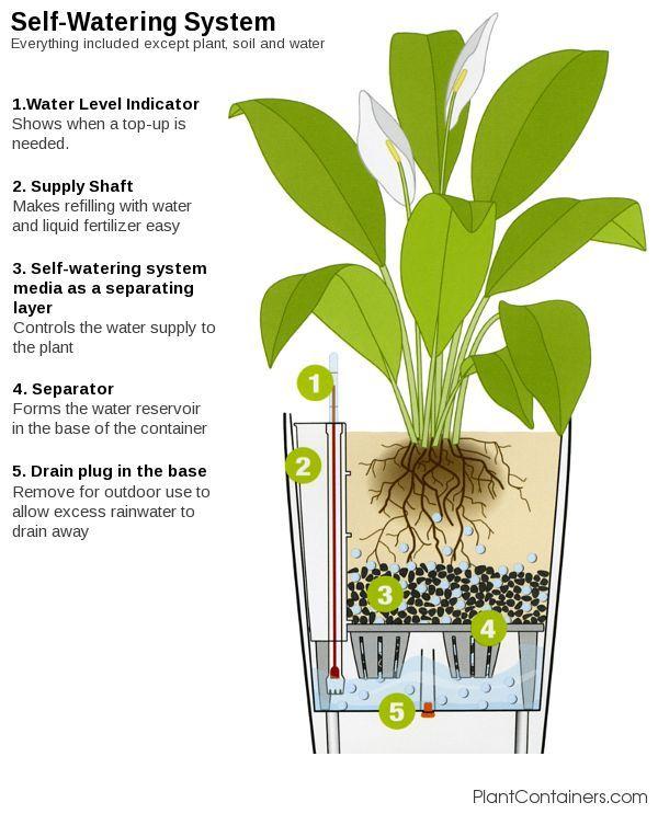 eden premium planter self watering instructions