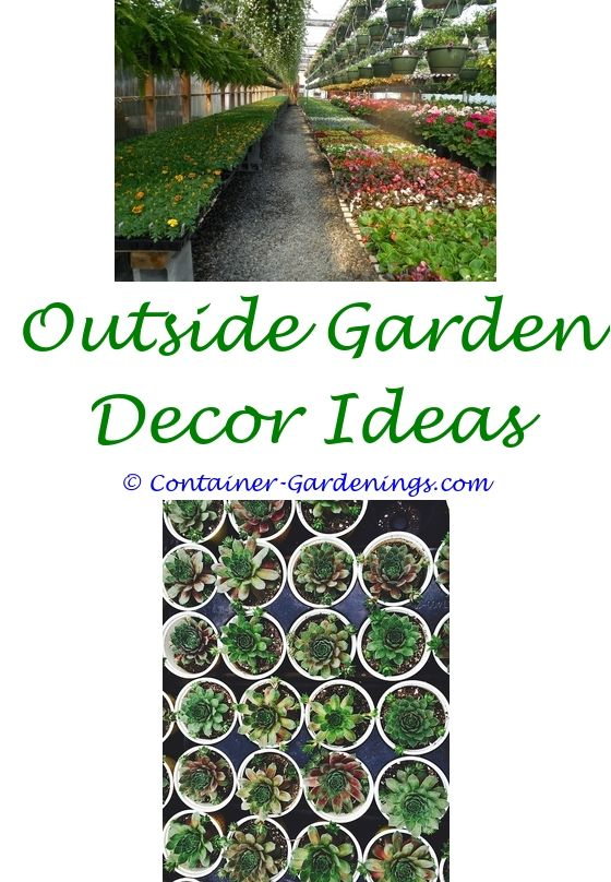 The 25 best garden center displays ideas on pinterest for Garden pond design books