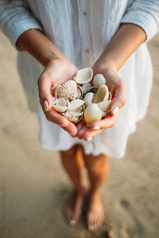 Close up of a female hands holding shells