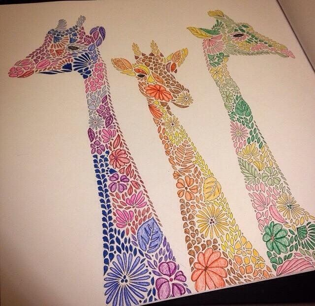 17 Best Images About ANIMAL KINGDOM Colouring Book On