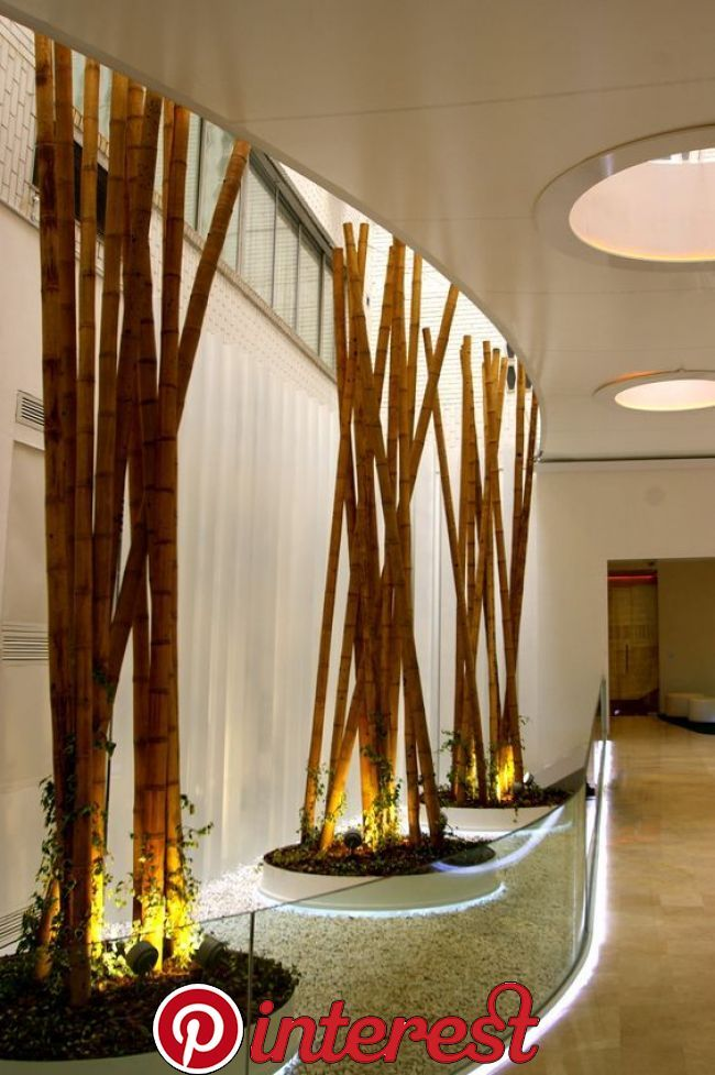 Hermosas Ideas Para Decorar Con Bambu Bamboo Decor Interior Garden Atrium Design
