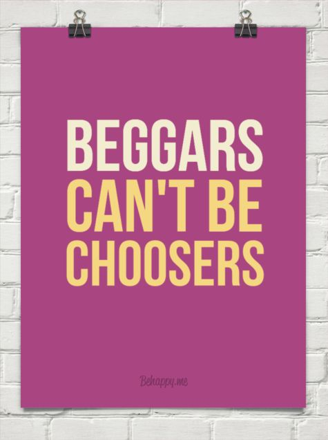 "beggars can t be choosers (這張照片太好笑了 貓果然是有 ""態度"" 的動物呀) beggars can't be choosers 這句話字面上的意思是 ""乞討者不能當選擇者."