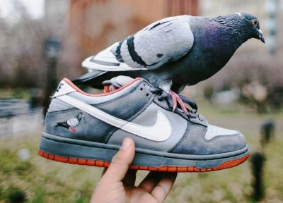 Staple x Nike SB Dunk Low 'Pigeon' - 2005 (by insighting)