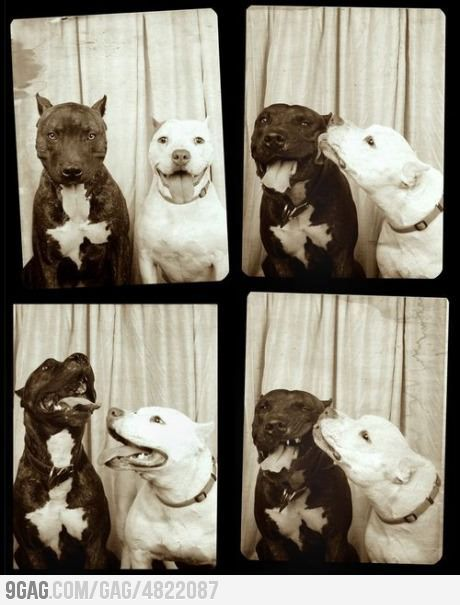 Kiss in the Photobooth