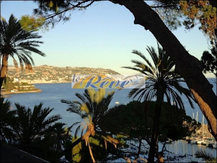 Property for sale in Liguria, Imperia, Bordighera‎, Italy - Italianhousesforsale - http://www.italianhousesforsale.com/view/property-italy/liguria/imperia/bordighera/3562848.html