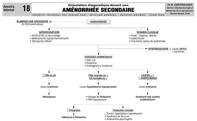 Cours : Aménorrhée secondaire ~ Sofiotheque