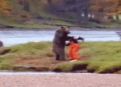 Bear fight… funniest video. My 10th grade computer teacher showed us this.