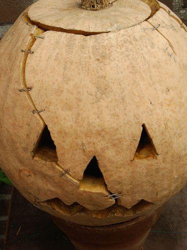 Frankenstein Pumpkin...freaking ingenious!  simple slice + heavy duty staples