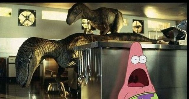 """Want to Giggle Like a Giganotosaurus? Check Out These Dinosaur Memes: """"Jurassic Pat"""""""