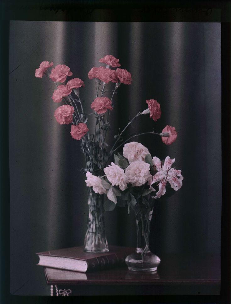 Två vaser, en med rosa nejlikor, en med rosa rosor och en lilja. Autochrome / Autokromfotografi.