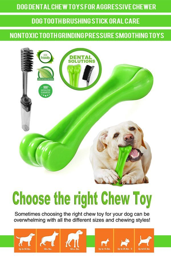Here S Our Top 5 Picks Of The Best Dog Toys For Heavy Chewers
