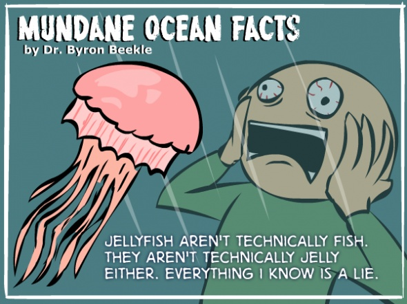 Amazing ocean facts comics funny fish humor funnies for Fun fish facts