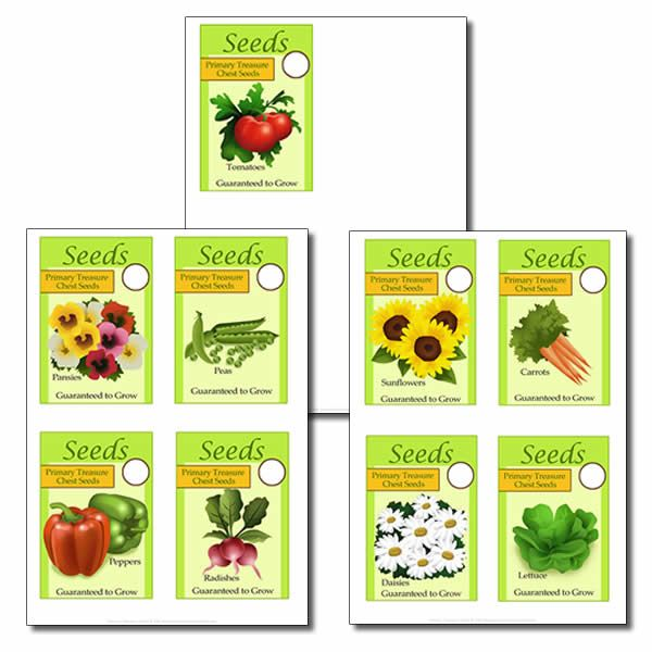Role Play - Garden Centre - Seeds