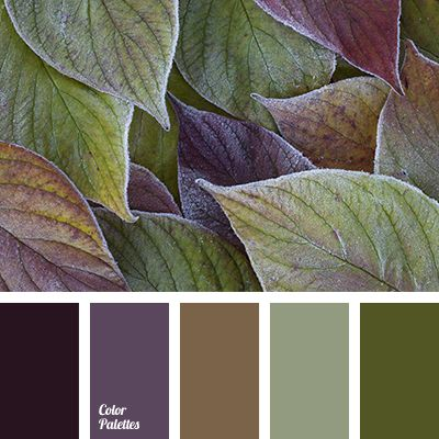 Color Palette #2902 | Color Palette Ideas | Bloglovin'