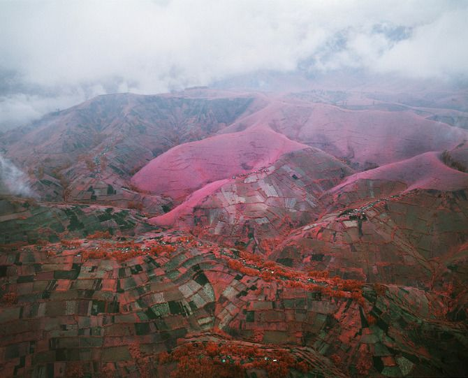 Richard Mosse - Infra Red photos of the congo