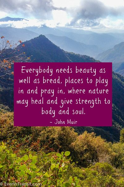 """""""Everybody needs beauty as well as bread, places to play in and pray in where nature may heal and give strength to body and soul"""" - John Muir Quotes"""