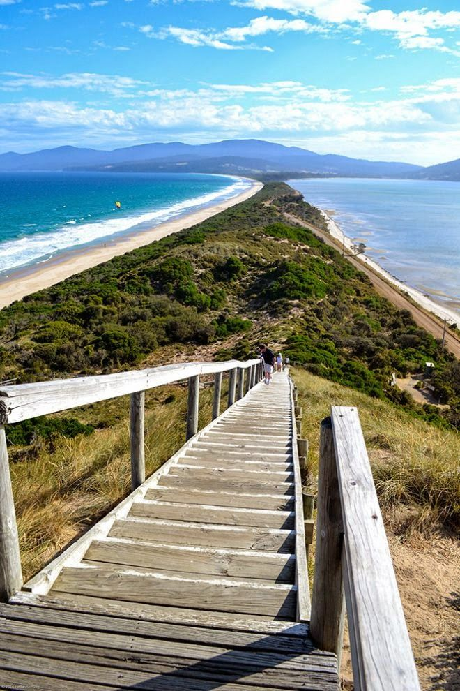 Bruny Island, Tasmania, Australia - Bought a shack on this island - So beautiful!. The road on the right is purposely unsealed as this area is a penguin colony for the tiny fairy penguin. They have their burrows under the greenery that you see.