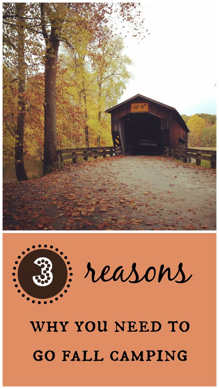 Did you know fall is one of the best times of the year to camp? Find out why and learn about great fall camping ideas and tools.