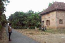 Rumah berhalaman Luas Rambipuji 550juta nego LT 1861m2/LB242  2 lantai SHM Akses jalan menuju Balung (Rowotamtu)  Dijual tanah luas plus rumah 2 lantai siap renovasi, ada 17 pohon durian, 3 mangga dan 1 rambutan cocok untuk hunian atau investasi atau usaha. 200 meter dari jalan raya. Fasilitas : 1 ruang tamu, 1 ruang keluarga, 7 kamar tidur, 3 kamar mandi, dapur, akses jalan truk bisa masuk, taman. Listrik 900 watt dan air sumur  Minat? Segera hub MONA, NRP Property 2bdbfecb/082140816417…