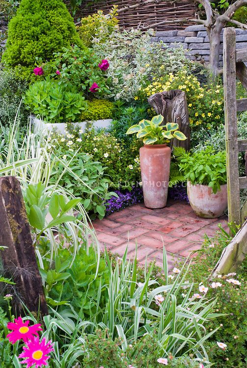 42 best enchanted garden images on pinterest enchanted for Tall ornamental grasses for pots