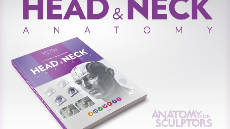 Anatomy for Sculptors' new book of human Head & Neck Anatomy with 3D model images for CG Artists, Sculptors, Painters and Illustrators
