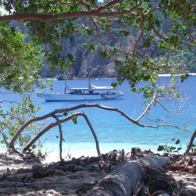 #fiji #castaway #island #awesomeadventuresfiji #seaspraysailing #yacht #boat #ocean #beach #trees #whitesand