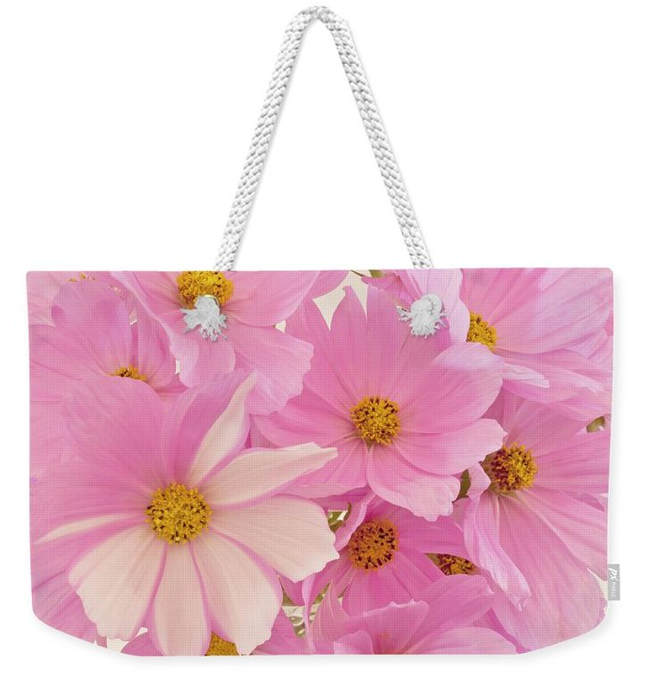 Cosmo Weekender Tote Bag featuring the photograph Pink Cosmos Sonata by Sandra Foster