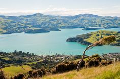 69 Facts About New Zealand That'll Blow Your Mind Okay officailly moving to New Zealand ASAP Any advise on how to make this happen in welcome