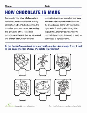 Second Grade Week 3: Second Grade Comprehension Worksheets: How Chocolate is Made. Students read the story about chocolate, then place the correct images in order by numbering them from 1 to 6.