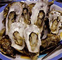 かき養殖生産販売 牡蠣(かき)食べ放題 かき佃煮 鳥羽・浦村 モトかき養殖場
