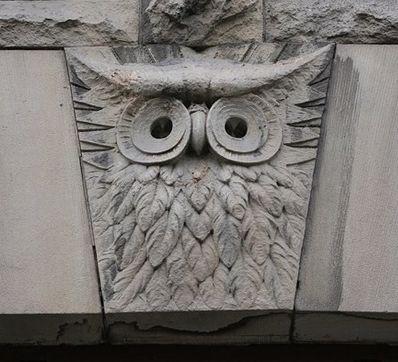 Owl Minervas Overflying: (a rainbow for your eyes)