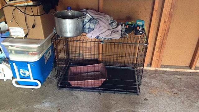 ΣΟΚ! Η Μητερα και η γκομενα της, βάλανε τον εξαχρονο γιο μέσα σε κλουβι για σκυλο και του ρίχνανε σιρόπι και σκουπίδια από γάτες | ΜΠΑΜΠΑ ΕΛΑ