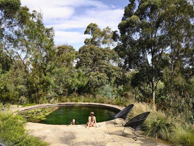 Fresh water pool system by Natural Swim Pools Australia