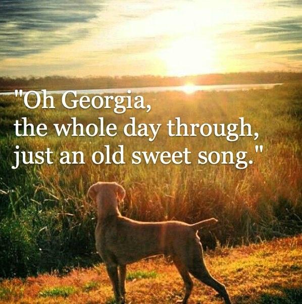 Georgia on your mind...