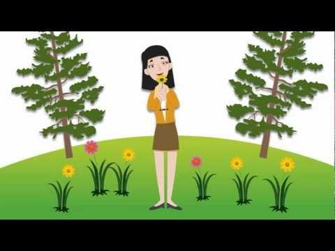 If you have allergies when wearing contacts, it can take part of the fun out of enjoying the Great Outdoors. (This equally applies to the Magnificent Indoors, too.) Is there anything you can do to help with this problem?   Absolutely! Watch our video below for some great tips if you're suffering from allergies while wearing contact lenses. Let us know what you think in the comments section, along with any tips that may have worked for you.
