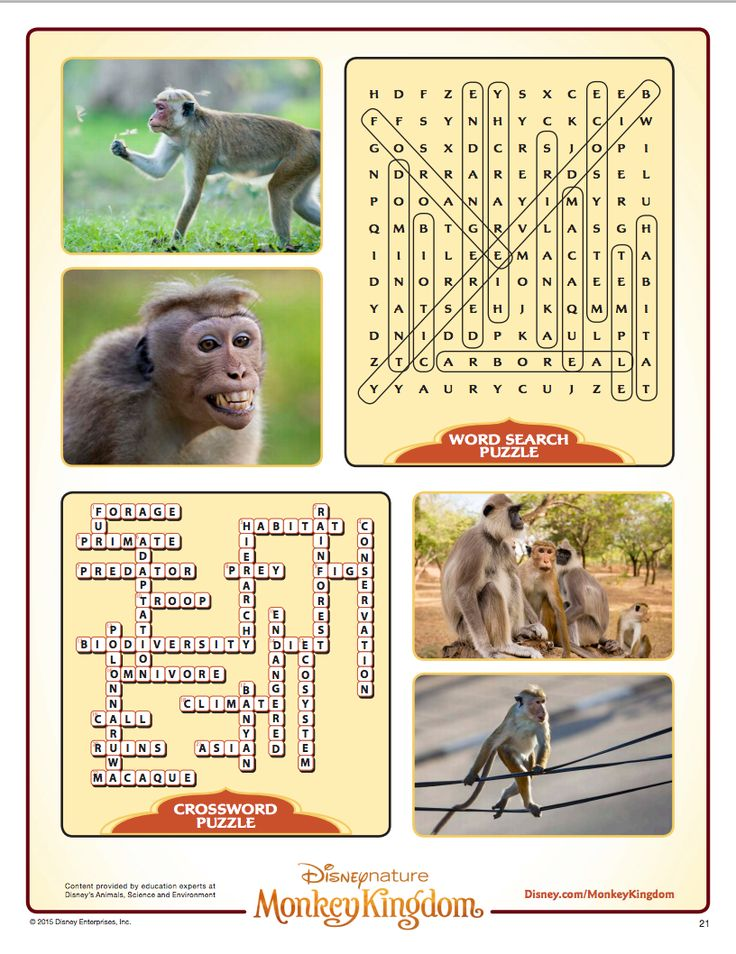 monkey kingdom word search disneynature pinterest. Black Bedroom Furniture Sets. Home Design Ideas