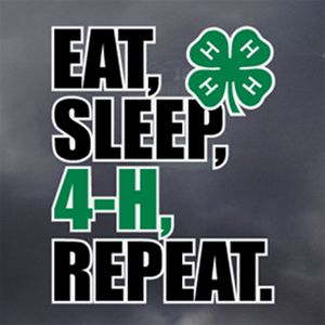 The newest 4-H window decal!