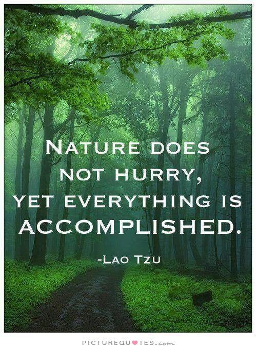 sprüche über natur Philosophie Zitate Natur sprüche über natur