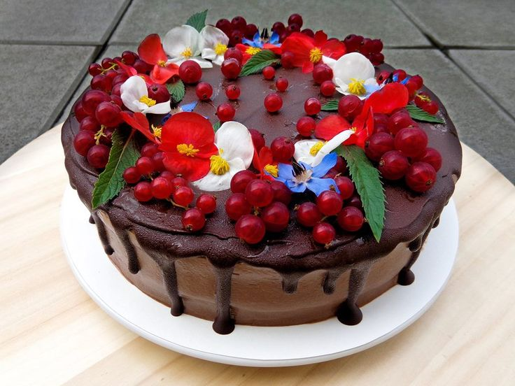 Chocolate cake with edible flowers - begonia and borage