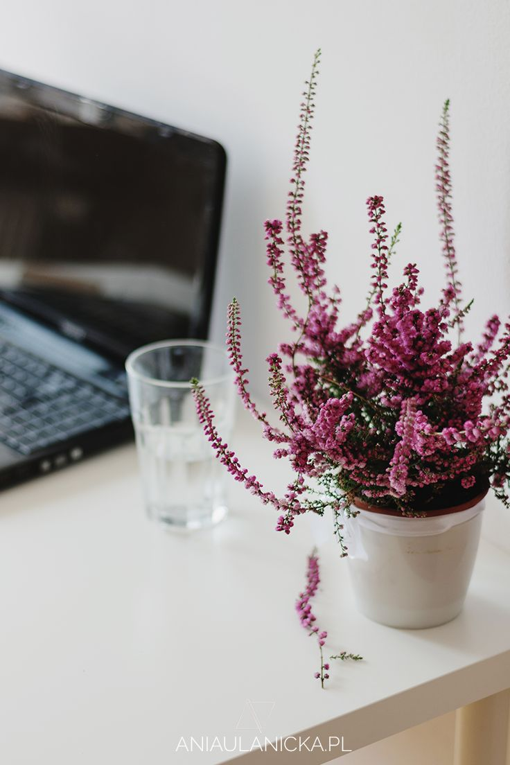 Ideal workplace: minimalist design, clean space and fresh flowers.