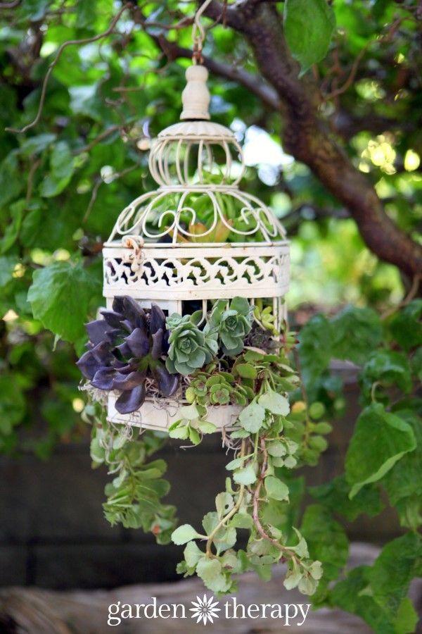 Make this! Birdcage Succulent  Planter