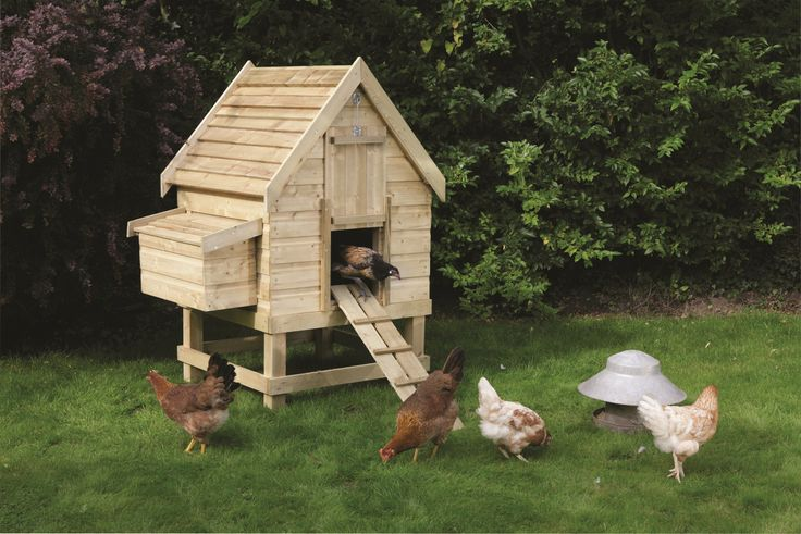 47 best back to the farm images on pinterest farms for Small backyard chicken coop plans free