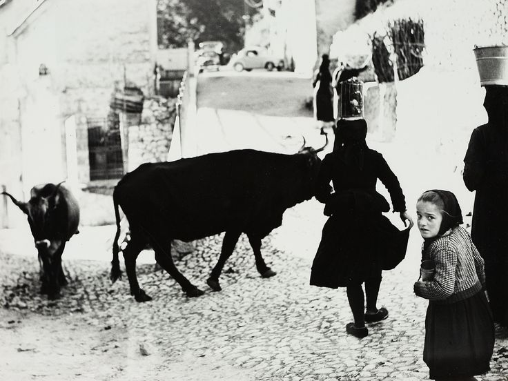 Mario Giacomelli, UNTITLED (FROM THE SERIES: SCANNO), Ca. 1957 ...